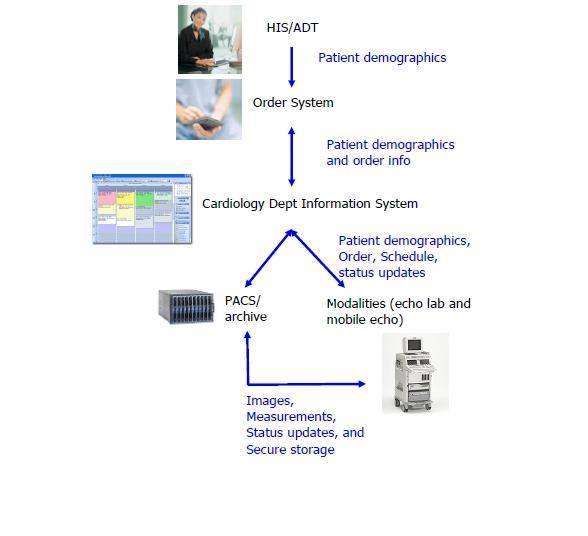 Echocardiography Workflow Ihe Wiki